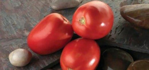 Фото томатов сорта Диаболик,удачныйсад63.рф