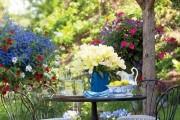 Фото 16 Весенние первоцветы (фото с названиями): разбудите ваш дачный участок!
