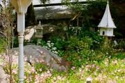 Фото 20 Весенние первоцветы (фото с названиями): разбудите ваш дачный участок!