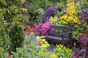 Красивые весенние цветы для сада и дачи
