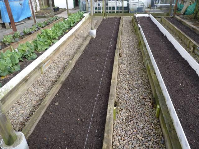 подготовка почвы для посадки лука весной