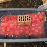 В горячей воде прогрев проводится прямо в сетке