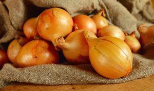 Средние луковички  лука фото