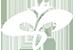 BOOF logo