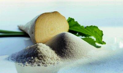 От переработки свеклы будет получено более 600 тонн сахара