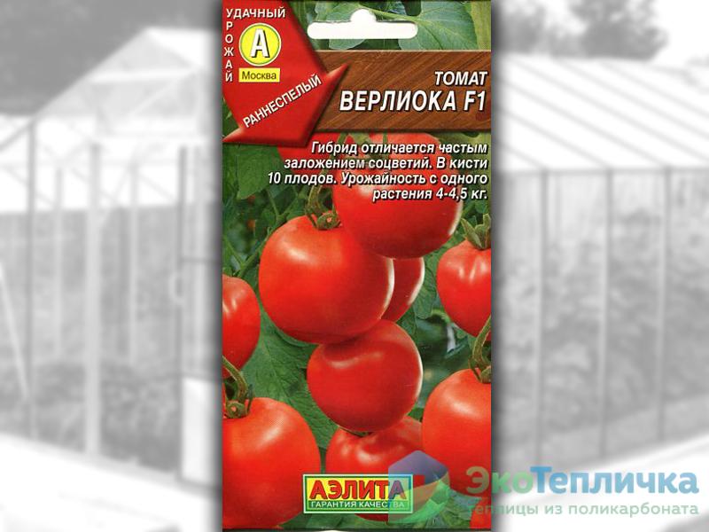 сорт помидоров Верлиока