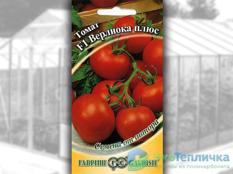 сорт помидоров Верлиока плюс