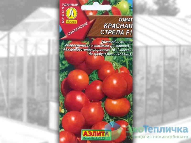 сорт помидоров красная стрела