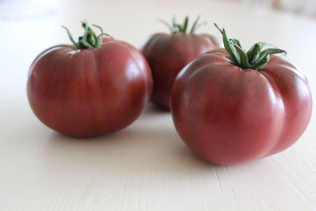 Самые популярные селекицонные сорта томатов введение