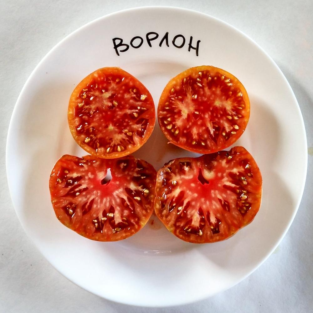 Коллекционные сорта томатов мировой селекции Ворлон