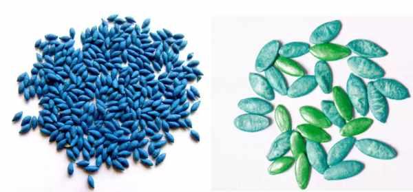 Инкрустированные семена