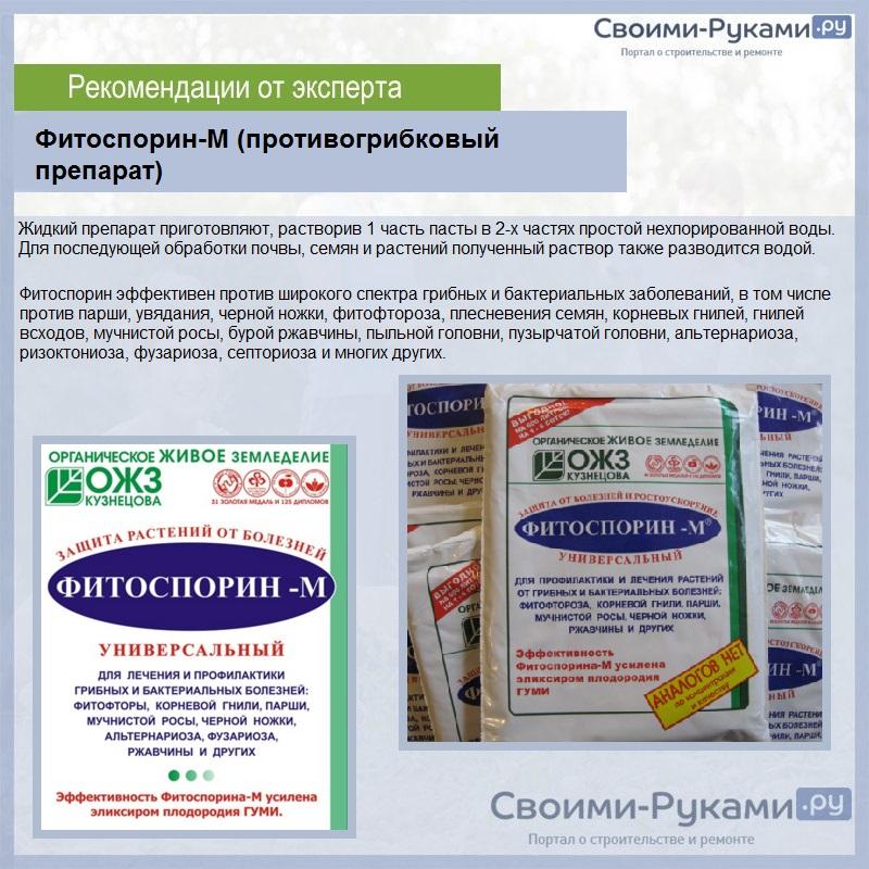 Фитоспорин-М (противогрибковый препарат)