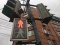 Из-за странной работы светофора в центре Курска могут пострадать пешеходы