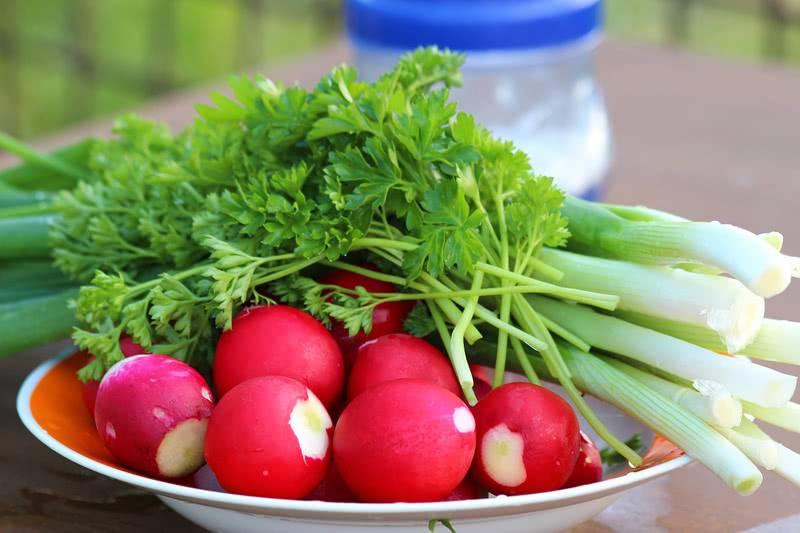 korneplody-vitaminy.jpg