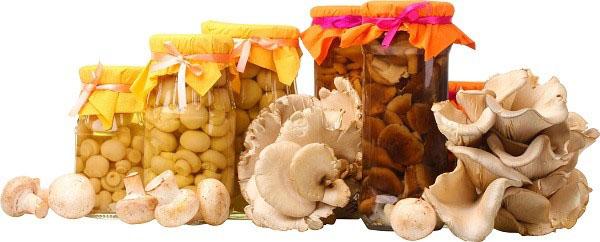 Консервация белых грибов в домашних условиях
