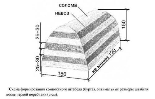 shema-formirovaniya-komposta.jpg
