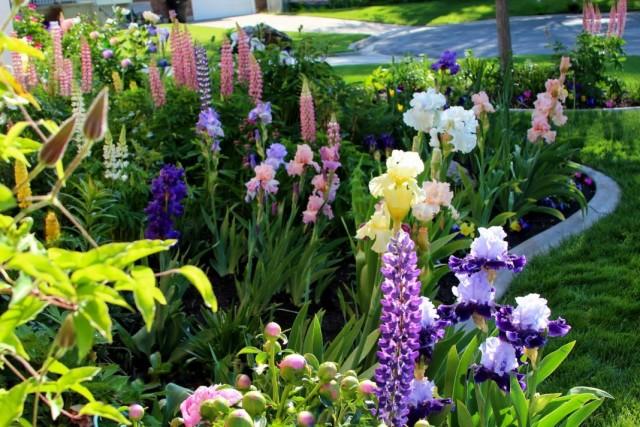 Garden-06-640x427.jpg