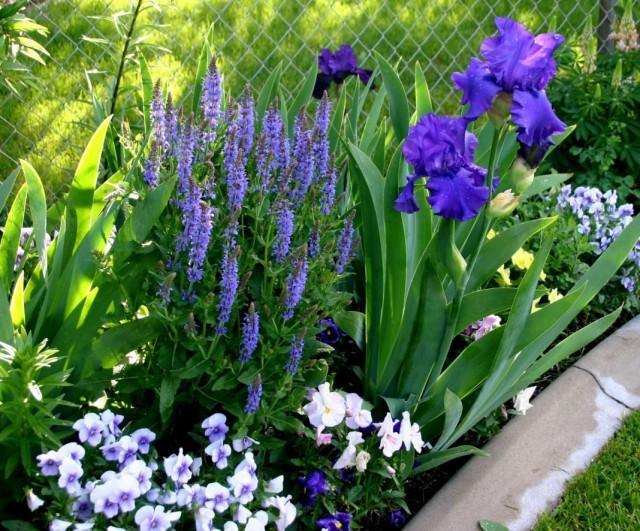 Garden-05-640x531.jpg