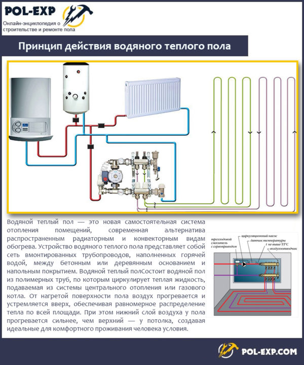 Printsip-dejstviya-vodyanogo-teplogo-pola-600x720.jpg
