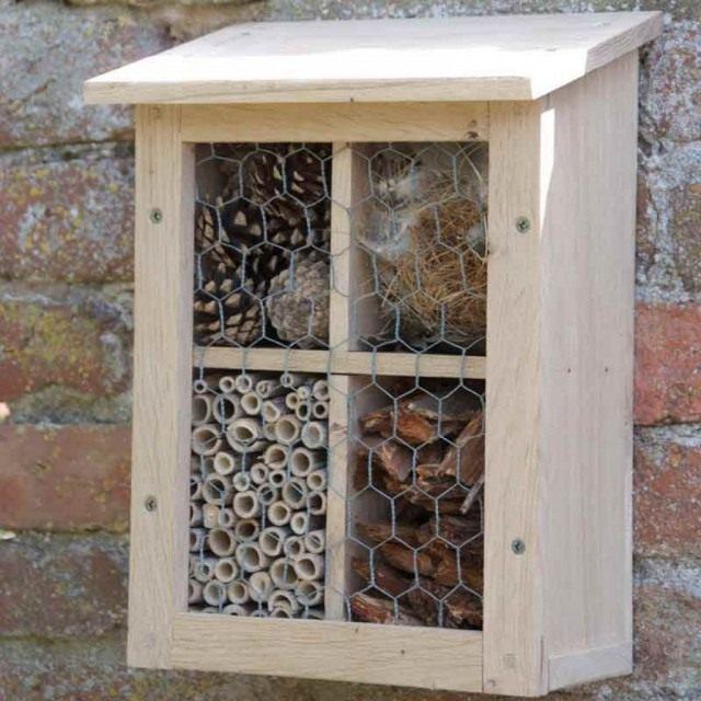 bug-house-640x640.jpg