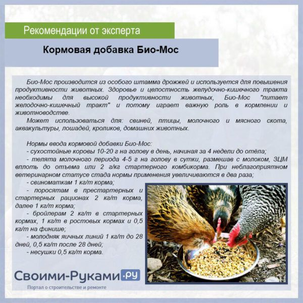 9ku5RXOrZXk-69-e1542716157846.jpg