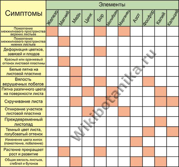 nedostatok-elementov-u-rastenii-tablitsa-1.jpg