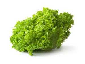 salat-lollo-bionda-300x225.jpg