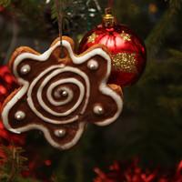 Рождественские пряники имбирные на елку