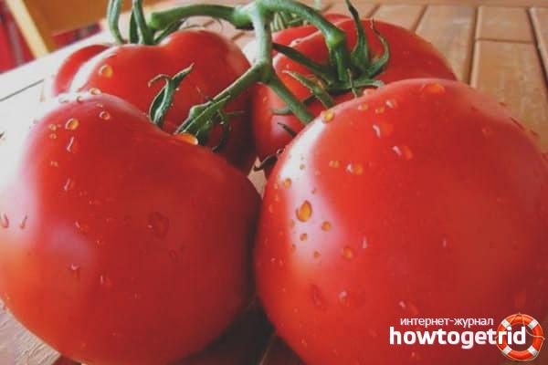 pomidory-sorta-kupec-f1.jpg