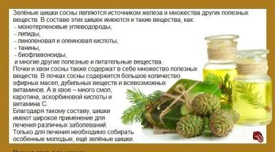 sirop-iz-sosnovyh-shishek-ot-kashlja_1_1.jpg