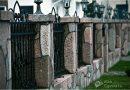 Забор из камня: современные виды, особенности и инструкции установки забора (видео + 85 фото)