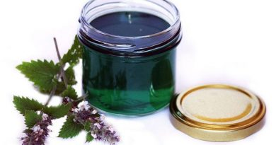 Варенье из мяты на зиму: 14 рецептов вкусного и полезного лакомства
