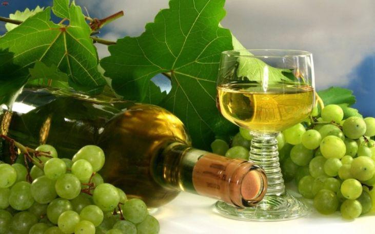 SHardone-vino-25.jpg