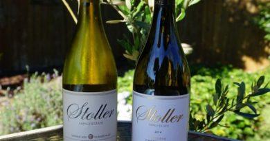 Шардоне вино: описание вкуса, цвета, особенности вина и его характеристики (125 фото и видео)