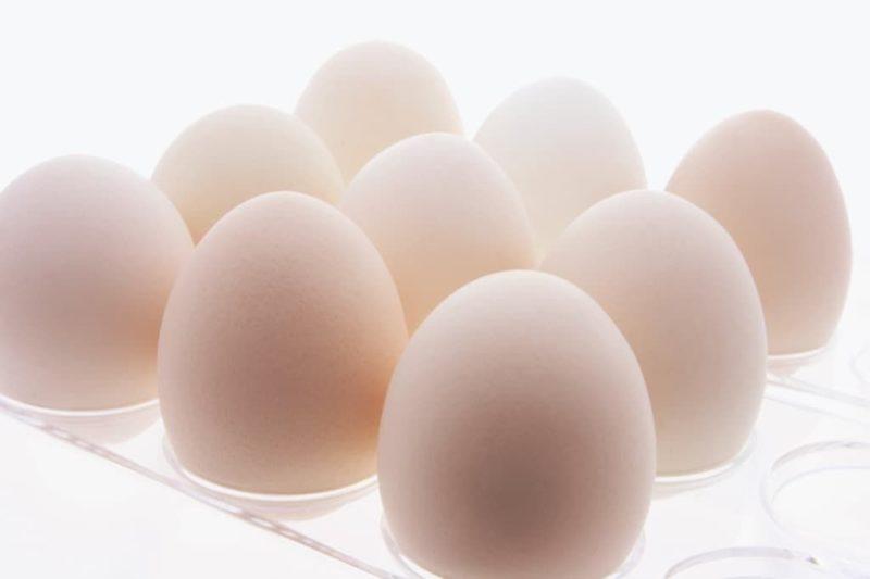 white-eggs-on-plastic-egg-carton-4v5lu2x.jpg