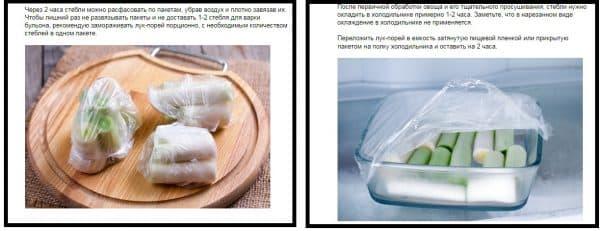 luk-porei-zamorozka-1-600x231.jpg