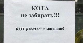 «Убойные» объявления с российских улиц и общественных мест: 20+ фото