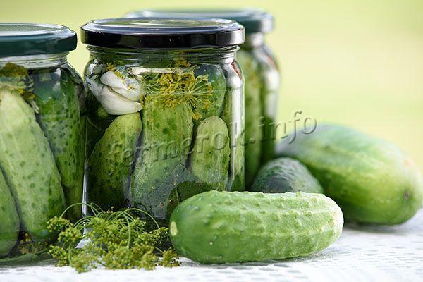 Ogurtsy-Feniks-salatnyj-sort-no-ih-mozhno-takzhe-zasalivat-ili-konservirovat1.jpg