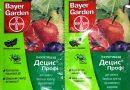 Яблоневый цветоед — гурман мира насекомых